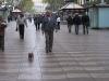 walking-the-dog-on-the-las-ramblas-2