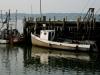 wellfleet-pier