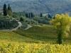 chianti-countryside-1