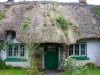 thatched-roof-cottage-2_edited-1