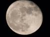Super Moon 11-15-2016A