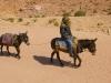 mule-rider-2