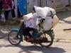 moto-transport-2